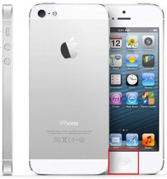 Homebutton Reparatur iPhone 5
