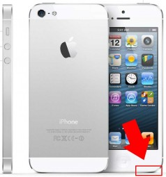 Lautsprecher/Buzzer Reparatur iPhone 5